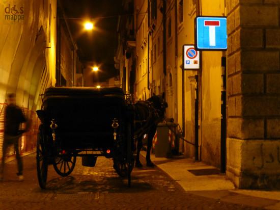 verona - cavallo con carrozza al parcheggio disabili
