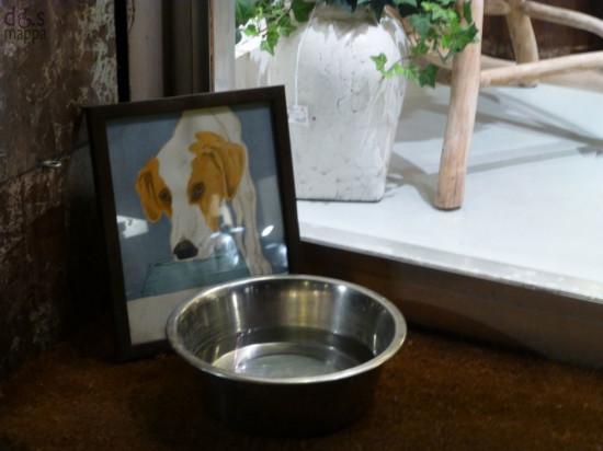 ciotola acqua per cani fuori da un negozio a verona