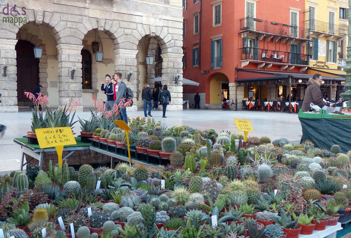 Fiori e piante invadono Piazza Bra  disMappa per Verona accessibile