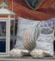 20150629 cuscino conchiglie coin Verona dismappa