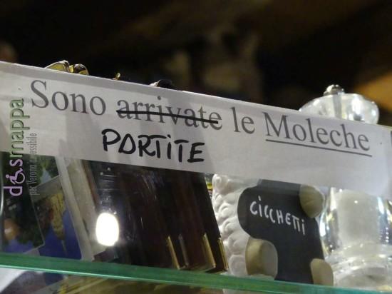 20170128 Moleche Verona dismappa 589